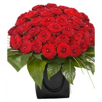 Red Roses 50