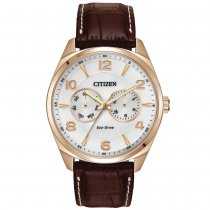 Citoyen Eco-Drive Silver Tone Hommes